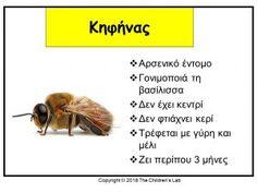 Bugs And Insects, Preschool Activities, Creative Ideas, School Ideas, Kindergarten, Spring, Diy Creative Ideas, Kindergartens, Preschool
