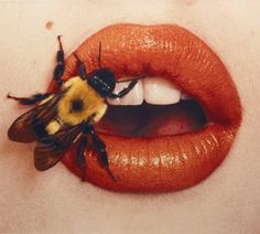 Bee, New York, 1995 by Irving Penn, from the retrospective exhibition Beyond Beauty at the Smithsonian, October 2015 – March 2016 Irving Penn, Lip Art, Realistic Drawings, My Drawings, Drawing Faces, Beyond Beauty, Polychromos, Art Sketchbook, Fine Art Photography