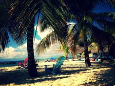 Îles Saona - Punta Cana - République Dominicaine