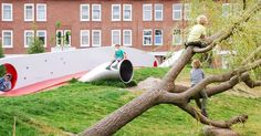 The Climbing Tree Deltaplantsoen The Hague  We used trees for climbing instead of play equipment in the wild play interior of the playground.  #play #playground #playscape #intothewild #dmau #deltaplantsoen #denhaag #speeltuin #schoolplein #publicspace #design #architecture #tree #climbing