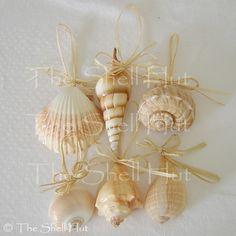 seashell christmas tree - Google Search