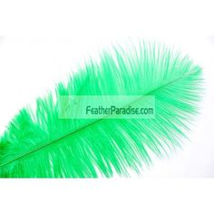 Green/Emerald Green Ostrich Feathers Wholesale DISCOUNT CHEAP DOZEN BULK 6-8 inch 100 Pieces PROMS