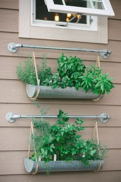 If you're working with a small backyard or patio, use a vertical garden to grow your vegetables, herbs, and other plants. These DIY vertical gardens will help you grow the best herbs you'… Vertical Herb Gardens, Vertical Garden Design, Herb Garden Design, Wall Herb Gardens, Small Space Herb Garden Ideas, Small Gardens, Kitchen Garden Ideas, Garden Ideas Diy, Vertical Planting