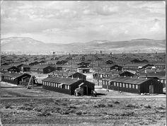 11万人以上の日系アメリカ人が強制収容された