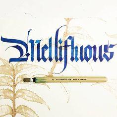 WOTD - Mellifluous .  .  #calligraphymasters #calligraphy #sachinspiration