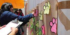 ARRANCA EN IZTAPALAPA LA TERCERA ETAPA DE LA CAMPAÑA DE ESTERILIZACIÓN ANIMALÍZATE