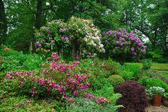 Crossburn - Scotland's Gardens