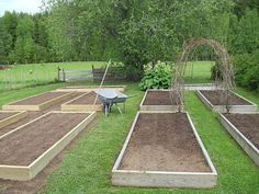 Raised beds - love the arbor connecting. Would be productive, and the kids would have fun playing underneath.