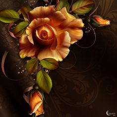 Moonbeam's October Roses is an original digitally painted Rose design resource rendered on colorful silk backgrounds.