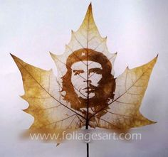 Leaves carving masterpieces