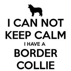 Keep Calm Border Collie