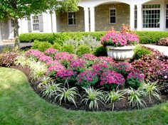 Cheap Landscaping Ideas to Make Your Yard Sensational Cheap Landscaping Ideas, Texas Landscaping, Landscaping With Rocks, Front Yard Landscaping, Mulch Landscaping, Landscaping Software, Corner Landscaping Ideas, Natural Landscaping, Landscaping Melbourne