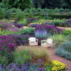 Scampston Walled Garden -The Perennial meadow in summer