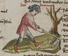 Thomasin <Circlaere>   Welscher Gast (a) Schwaben, um 1460-1470 Cod. Pal. germ. 320 Folio 20v
