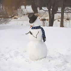 10 divertenti pupazzi di neve come non li avete mai visti