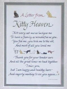 A letter from Kitty Heaven