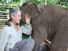Funny Wildlife, A Hug for Big-hearted Dr K