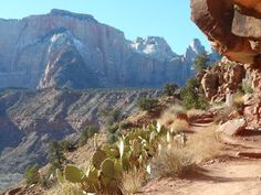 Watchman Trail, Zion National Park, Utah  Pushing Past Our Limits | The Lemonade Digest Woman