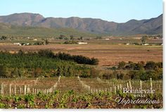 Win a weekend for 2 in Bonnievale 2 In, Wines, South Africa, Vineyard, Cape, To Go, Spaces, Outdoor, Beautiful