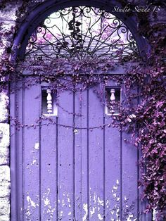 Another beautiful, old ~ purple door~❥