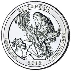 """""""America the Beautiful"""" United States quarter dollar coin, depicting El Yunque National Forest of Puerto Rico."""
