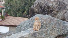Seen in Cyprus #gabrielaaufreisen