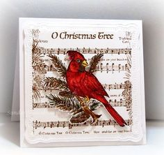 Stamps - Our Daily Bread Designs Sing for Joy, O Little Town of Bethlehem, ODBD Custom Cardinal Die