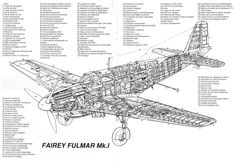 fulmar-2.gif (Obrazek GIF, 4000×2796pikseli) - Skala (38%)