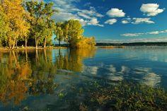 River Splendor by Terry McNeill