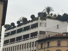 Roof garden in Corso Vercelli Milano