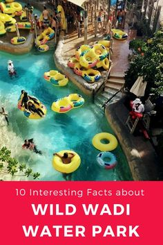 Wild Wadi Water Park is the first and oldest waterpark in Dubai overlooking the iconic Burj Al Arab Jumeirah. Check out more interesting facts about this water park. Water Facts, 10 Interesting Facts, Family Vacation Spots, Burj Al Arab, Visit Dubai, World Traveler, Asia Travel, More Fun, Fun Facts