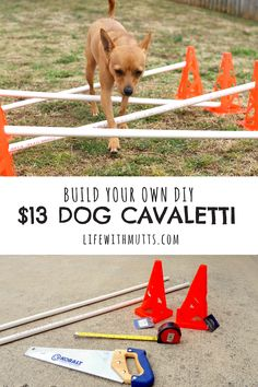 Cavaletti is a great tool for building a dog's balance, rehab, agility, strengthening muscles, and coordination. Free tutorial to build your own DIY cavaletti dog agility equipment for only $13.