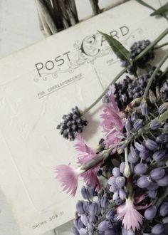 vintage postcard #decor
