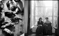 Until her death in 1996 she lived in her Parisian apartment with her two lovers and beloved seventeen Persian cats, who shared her bed and, at mealtimes, were allowed to roam the dining-table selecting tasty morsels (the cats, that is).