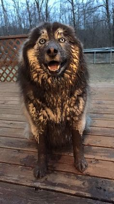 Lol. Mud season is HERE!!!