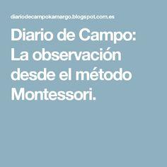 Diario de Campo: La observación desde el método Montessori.