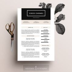 Resume Template 5 pa