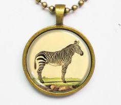 Zebra Necklace - Vintage Animal Illustration of Zebra-