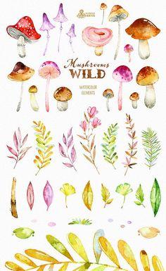 Wild Mushrooms. 41 Watercolor separate elements by OctopusArtis #watercolorarts