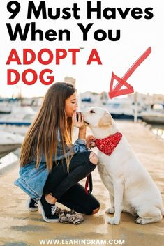 This blog post on new dog essentials provides a checklist of products and ideas on what to buy for a new dog or puppy. It doesn't matter if you rescued your pup from a shelter or bought it from a breeder. This is everything you need to know, buy and have on hand. Dog Nails, Dog Rooms, Two Dogs, Free Dogs, New Puppy, Dog Owners, Rescue Dogs, Dog Love, Best Dogs