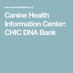 Canine Health Information Center: CHIC DNA Bank