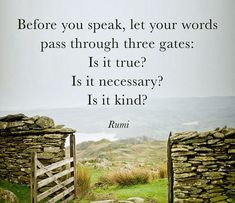 Before you speak, let your words pass through three gates: Is is true? Is it necessary? Is it kind? - Rumi