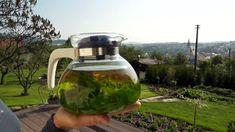 Čajová směs na jarní očistu — Recepty — Kouzelné bylinky — Česká televize Watering Can, Herb Garden, Cocktails, Herbs, Canning, Plants, Craft Cocktails, Herbs Garden, Cocktail