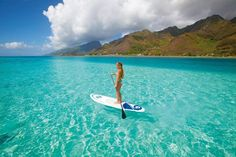 Try Your Hand at Stand Up Paddle Boarding in Playa del Carmen - Playa Palms Beach Hotel Sup Stand Up Paddle, Sup Paddle, Sup Surf, Image Surf, Best Paddle Boards, Inflatable Paddle Board, Sup Yoga, Standup Paddle Board, Walk On Water