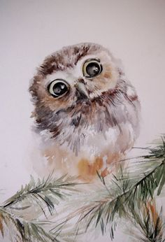 Baby Owl - Watercolor Painting, Original Watercolor Painting Art, Bird Painting, Owl Painting, Brown Green: