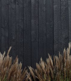 Shed Plans - Charred Larch Wood Cladding · Russwood Timber - Now You Can Build ANY Shed In A Weekend Even If You've Zero Woodworking Experience! Cedar Cladding, Exterior Cladding, Black Cladding, Timber Cabin, Charred Wood, Dog Fence, Pallet Fence, Farm Fence, Fence Gate