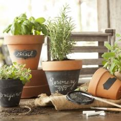 Chalkboard paint to reuse and mark herb pots