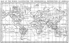 Geography of the Animal World, by Alfred Russel Wallace