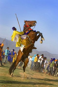 Sikh Horsemanship, Hollamohalla festival, Punjab, India ~ Beautifully done, and he didn't even fall off!~