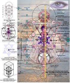 6. Supra-Hologram | The Mind Matrix Sacred Geometry Symbols, Sacred Geometry Tattoo, Arte Peculiar, Les Chakras, Fibonacci Spiral, Spirit Science, Knowledge And Wisdom, Chakra Meditation, Flower Mandala